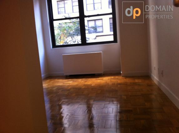 Midtown East Doorman Large One Bedroom Apartment